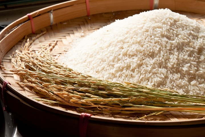 Combating Anemia in Mindanao through Iron-Fortified Rice