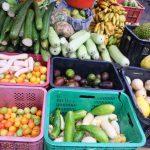 vegetables-pna