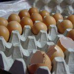 eggs-1325120-640x480